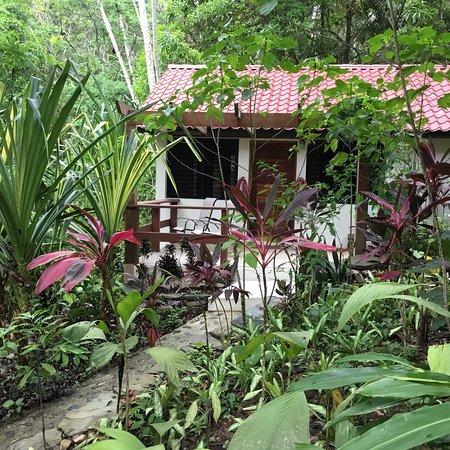 Black Rock, Belize: photo4.jpg