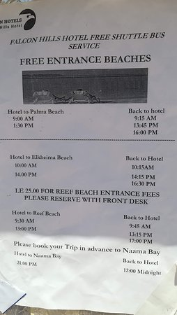Dive Inn Resort: Расписание для FALCON HIILS