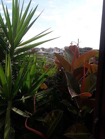 史特芳妮雅酒店照片