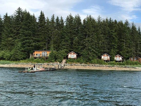 Elfin Cove Photo