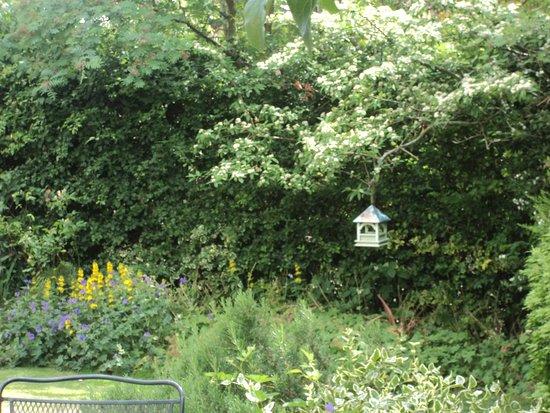 Pickmere Country House: Garden