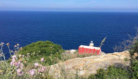 I migliori 10 last minute hotel a Isola Del Giglio | TripAdvisor
