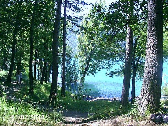 Parco Regionale dei Laghi di Suviana e Brasimone: il bosco