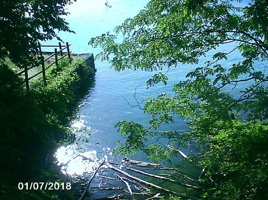 Parco Regionale dei Laghi di Suviana e Brasimone: presso il centro velico