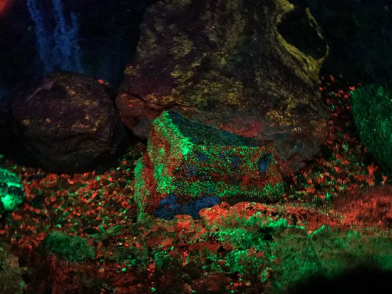 Ogdensburg, NJ: Beautiful fluorescent rocks