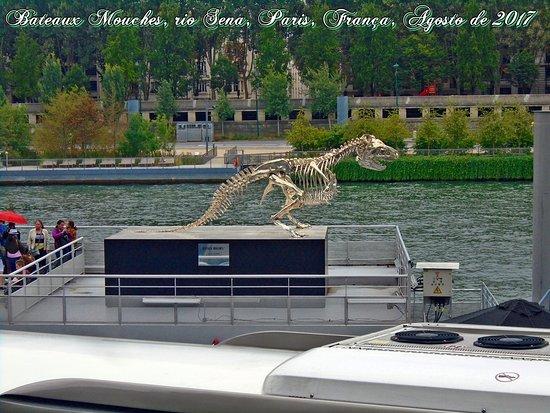 Bateaux Mouches 游船照片
