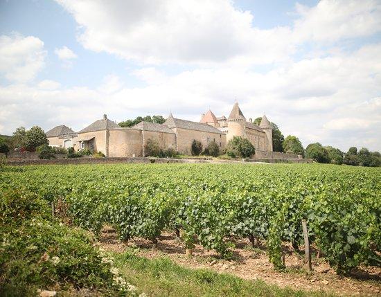 Chateau de Rully照片