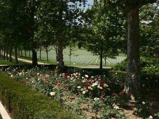Florence American Cemetery照片