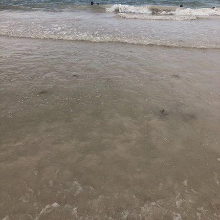 巴瓦罗海滩照片