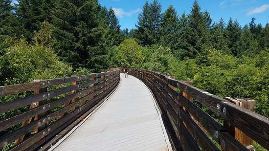 Banks-Vernonia State Trail