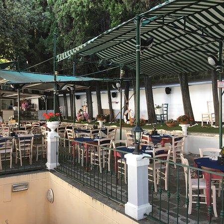 Photo1 Jpg Picture Of La Terrazza Dell Ostello Trieste