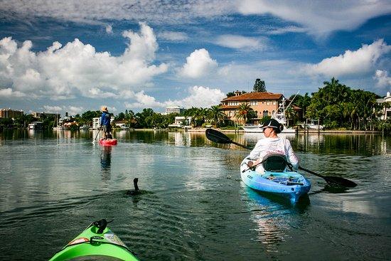 Kayaking SRQ Tours and Rentals