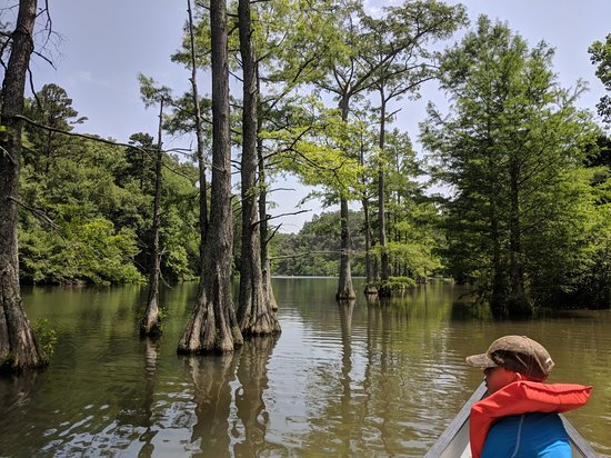 Beavers Bend River Floats