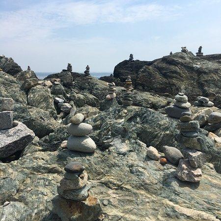 纽波特悬崖步道照片