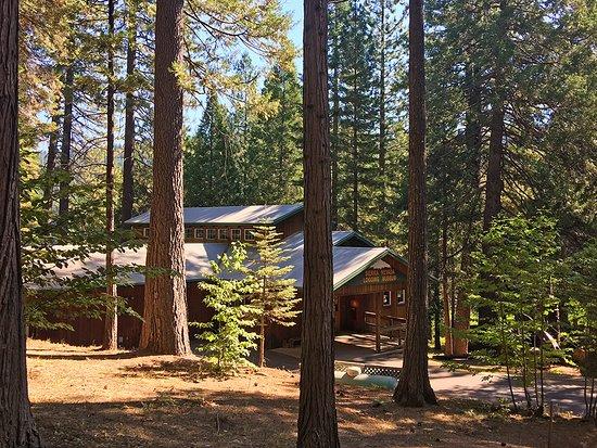 Arnold, CA: Sierra Nevada Logging Museum