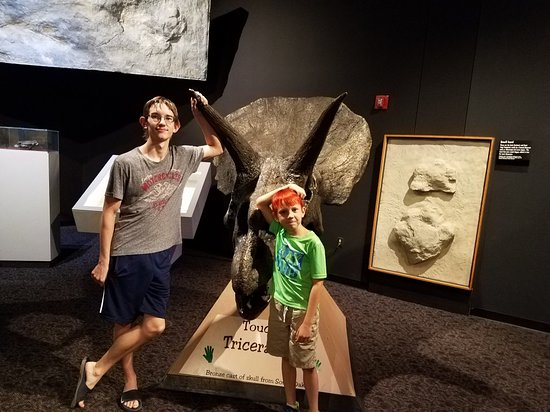 Mesalands Community College's Dinosaur Museum and Natural Sciences Laboratory: 20180627_152112_large.jpg