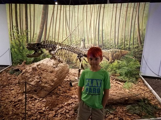 Mesalands Community College's Dinosaur Museum and Natural Sciences Laboratory: 20180627_150611_large.jpg