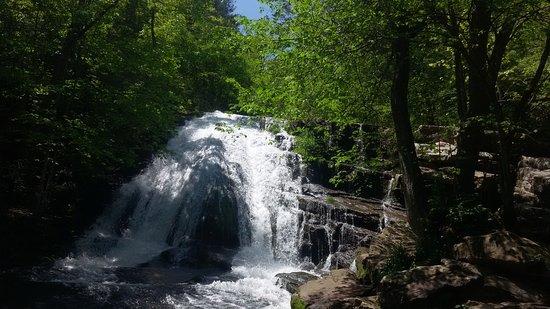Roaring Run falls and Furnace Trail