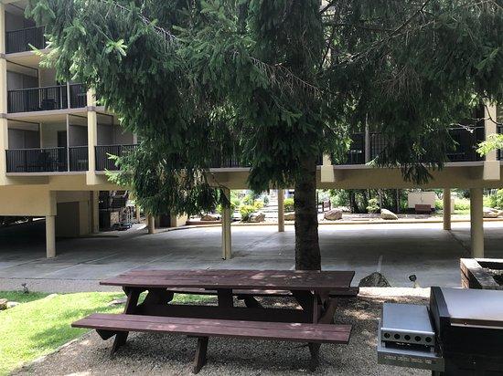 Tree Tops Resort照片