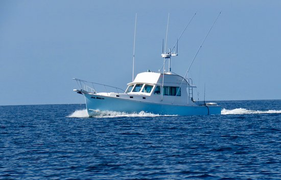 Jail Break Fishing Charters: The Jail Break is a 42' Duffy offering all of the comforts available at sea.
