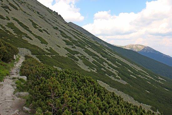 Skalnate pleso: 天文台の下の登山道