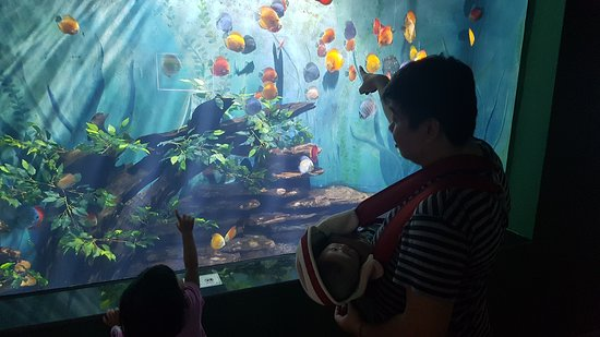 Vinwonders Phu Quoc: Fun for the young ones