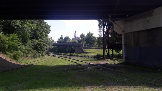 Williamsport, MD: Rails, water and trails to explore.