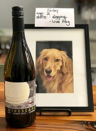 nightscape picture of winescape winery spokane tripadvisor
