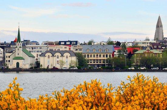 Reykjavik Walking Tour - Walk with a Viking
