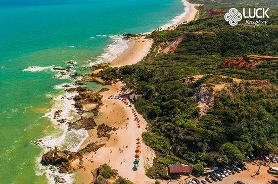 Increíbles playas de la costa sur