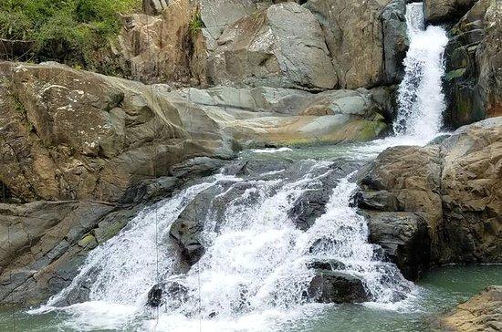 El Yunque Rainforest and Pinones...