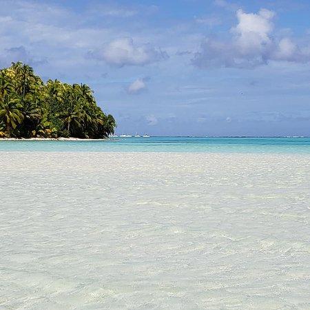 Poe Charter Tahiti : TETIAROA, L'île aux Oiseaux sur l'île de Rimatu'u