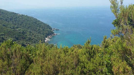 Pelion Scout: Amazing view.