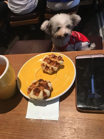 Waffling Beans: Waffles especially made for pups!