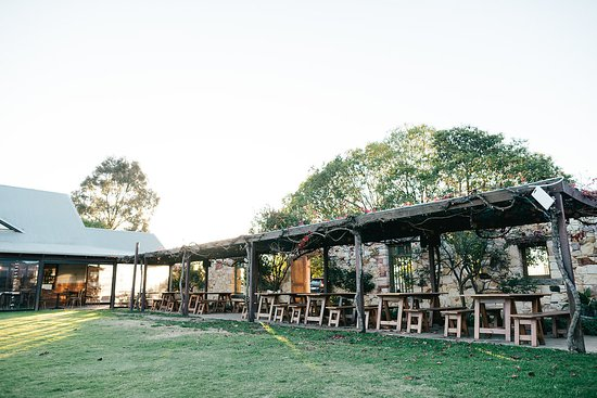 RiverBank Estate Winery: Under the vines