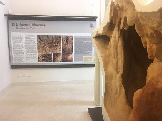 Palazzo Baldassarre - Museo dell'Uomo di Altamura