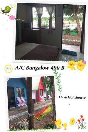 Rainbow Lodge Guesthouse & Homestay照片