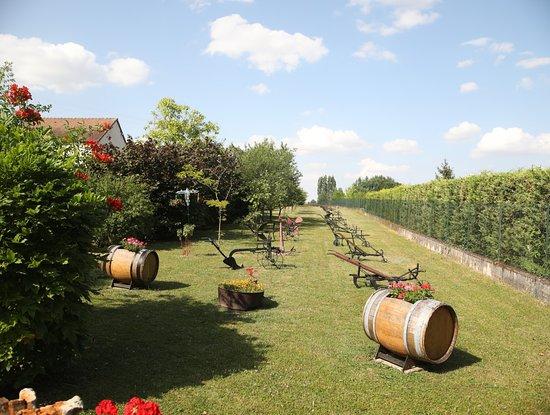 Domaine Charbonnaud-Bourgogne照片