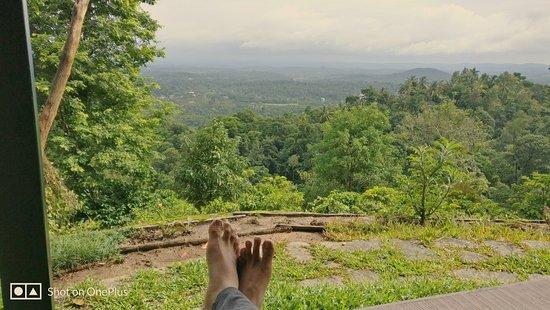 Muttil, Índia: IMG_20180629_093341_154_large.jpg