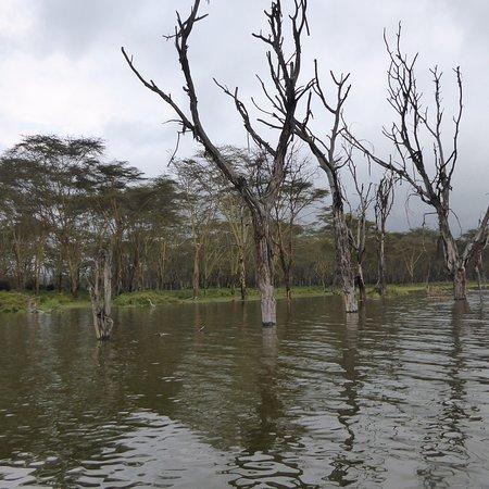Lake Oloidien : photo1.jpg