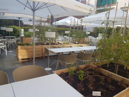 Huerto Urbano Del Poble Sec La única Terraza De Verano Eco