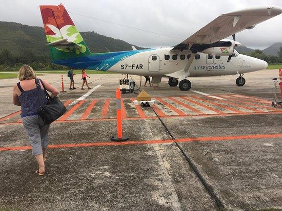 Air Seychelles: Airplane