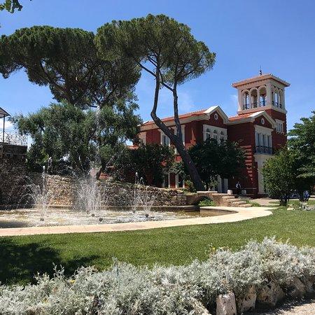 Mercure Villa Romanazzi Carducci: photo9.jpg