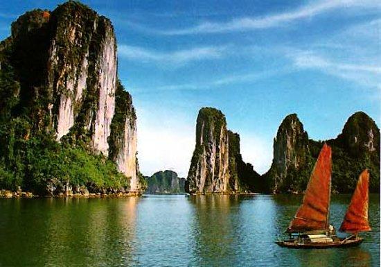 Focus Indochina照片