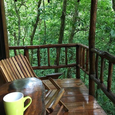 Bilde fra Tree Houses Hotel Costa Rica
