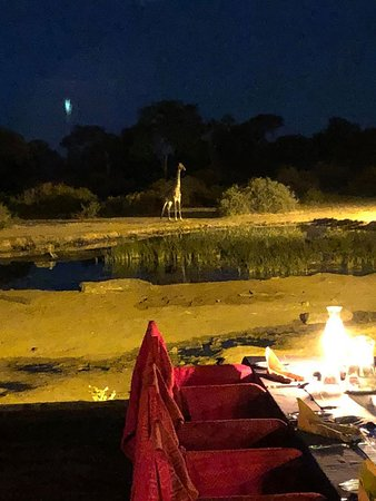 Elephant Valley Lodge: Dinner view