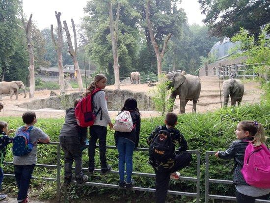 Zoo Wuppertal Bewertung
