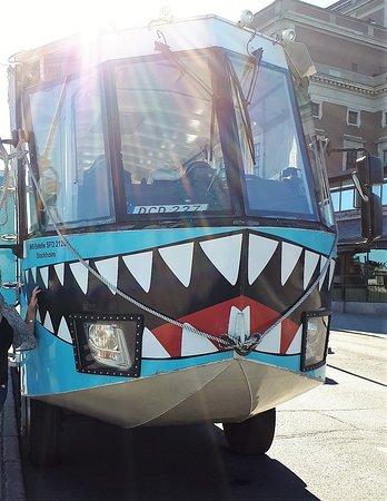 Ocean Bus: Déco dents de requin: tout STOCKHOLM vous regarde :)