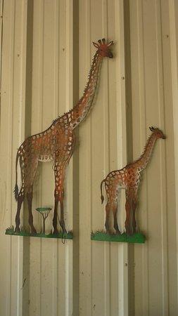 Franklin, TX: excellent giraffe sculpture on wall of giraffe enclosure