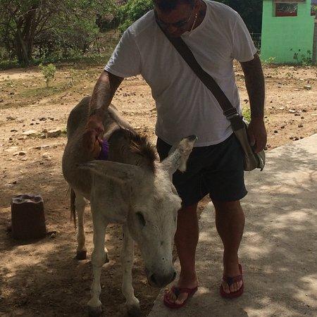 Saint Paul Parish, Antigua: me & my husband brushing stevie